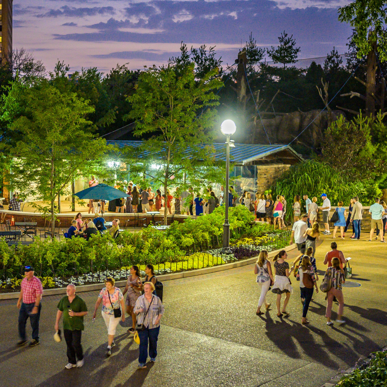 Visit A World Of Wildlife And Wonder Lincoln Park Zoo