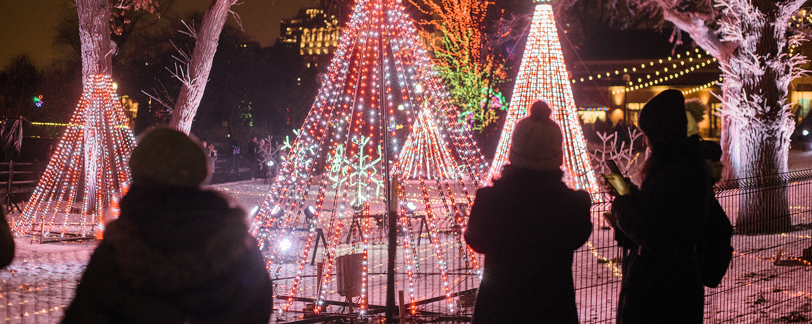 Guests enjoying light displays during ZooLights